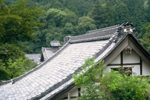 Japanese roof line